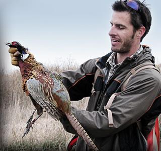 Old Pheasant