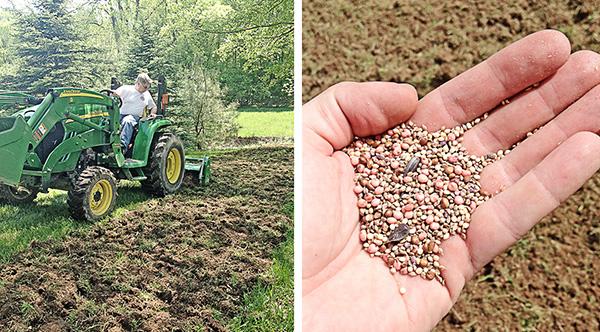 Seeding Food Plot