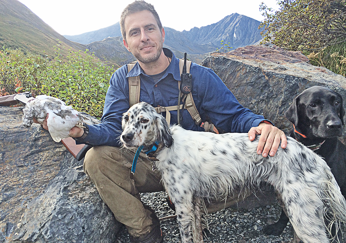 Whitetail Ptarmigan and Llewellin Setter