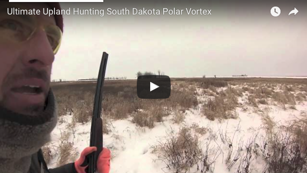 Winter Bird Hunting