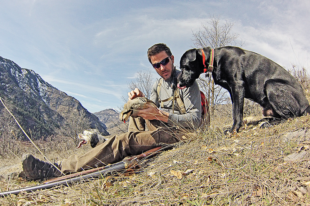 Birddogs and Chukar