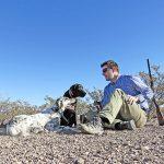 Resting Birddogs