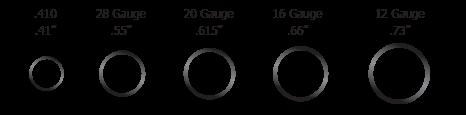 Shotgun Gauge Comparison