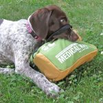 Adventure Dog Med Kit