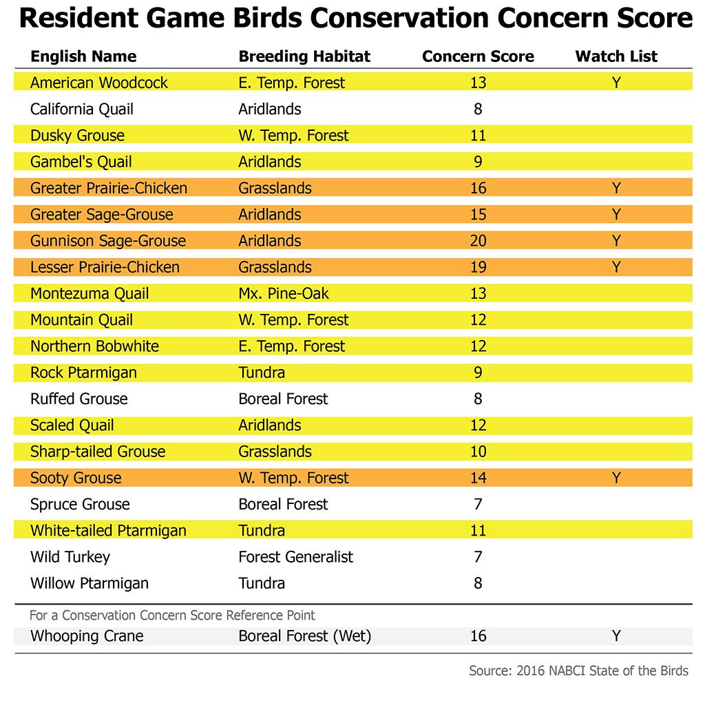 Bird Concern Score