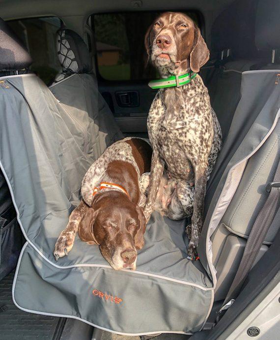 Orvis Back Seat Hammock